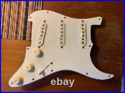 Fender American Professional Stratocaster LOADED PICKGUARD Strat V Mod